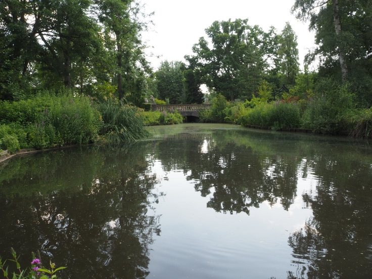 A view over the small lake in Jubilee Gardens at Beale Wildlife Park